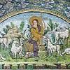 Wolves for Shepherds