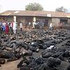 Demon Possessed Muslims Burn Christians Alive