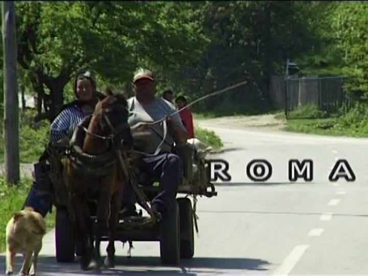 EUROPEAN ROMA VINEYARD MOVEMENT