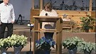 Prophetic Words and Prayer over Norway
