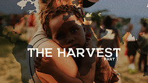 The Harvest Part 1