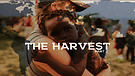 The Harvest Part 2