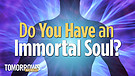 Do You Have an Immortal Soul?