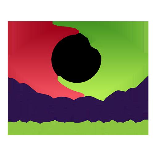 Modo TV
