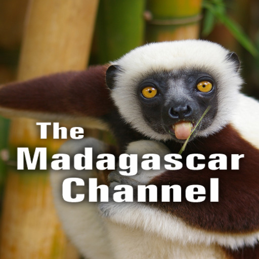 The Madagascar Channel